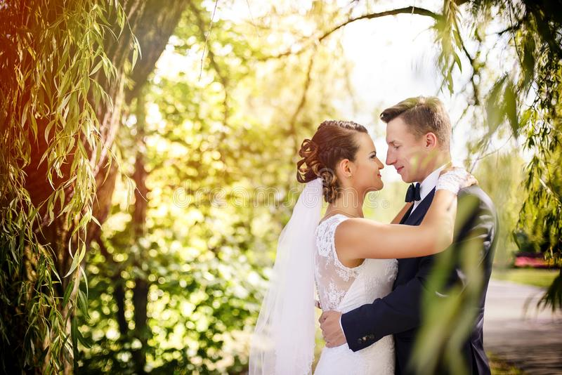 Элегантный жених и невеста представляя совместно outdoors на день свадьбы стоковая фотография