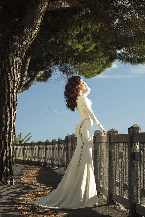 Download Элегантный представлять женщины брюнет Стоковое Изображение - изображение насчитывающей напольно, aloha: 40591241