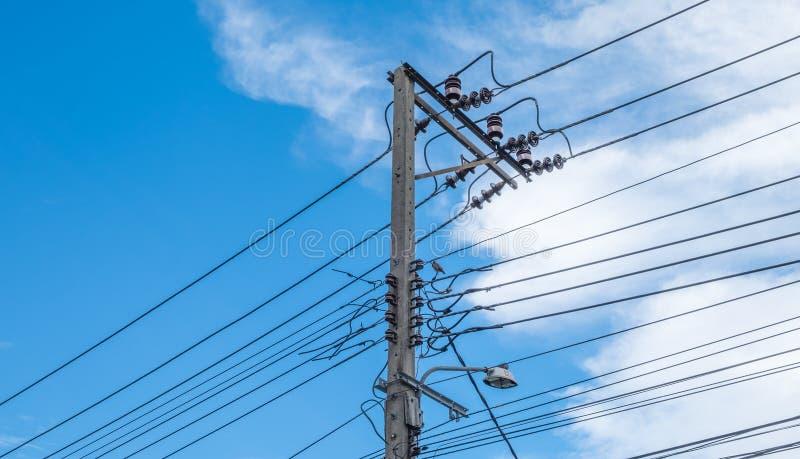 Электрические линии электропередач и провода поляка с голубым небом стоковое фото