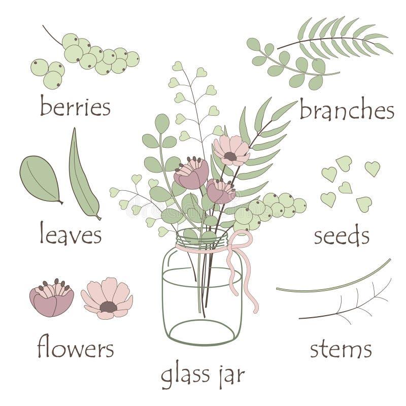 Элементы ботаники иллюстрация вектора