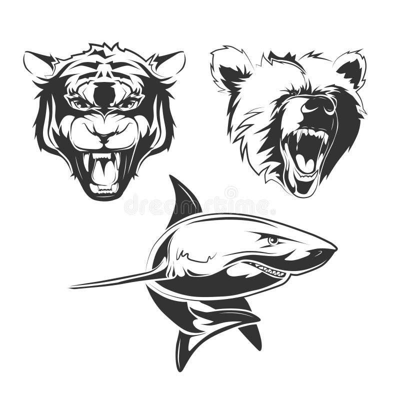 Элементы вектора для ярлыков команды спорта с гризли, акулой и тигром бесплатная иллюстрация