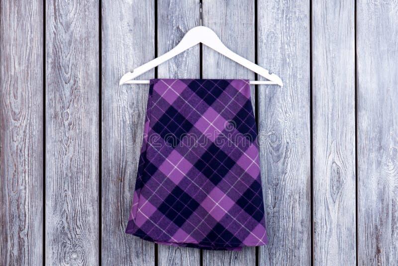 Юбка плоского положения фиолетовая checkered стоковая фотография rf