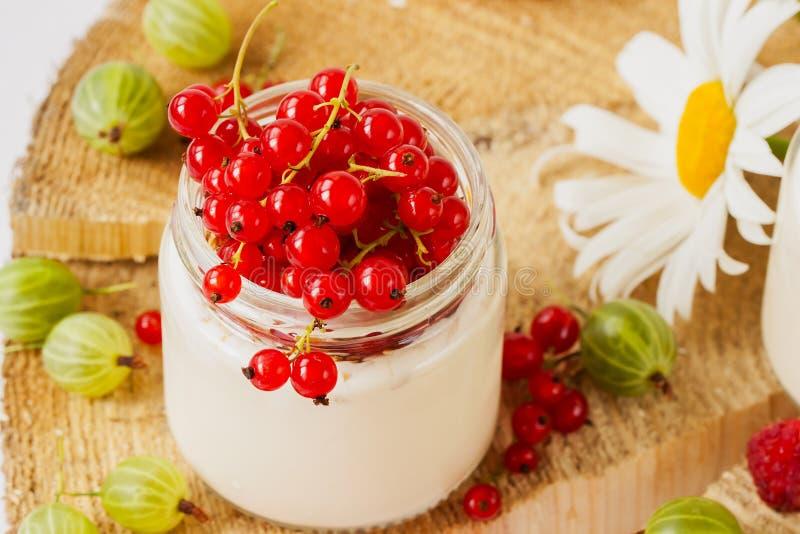 Югурт диеты естественный с ягодами для потери веса стоковые фото