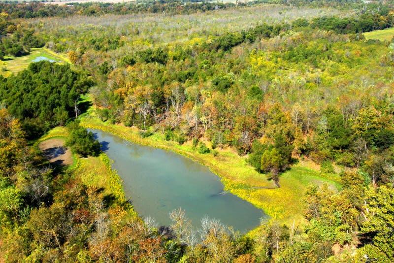 Южный ландшафт заболоченного места Иллинойса стоковая фотография