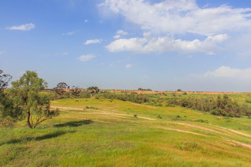 Южный Израиль стоковое фото