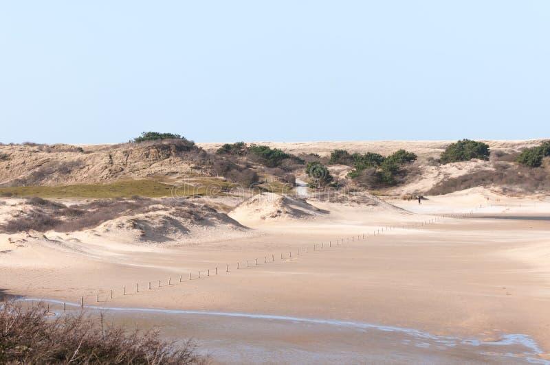 дюны голландские стоковые фото