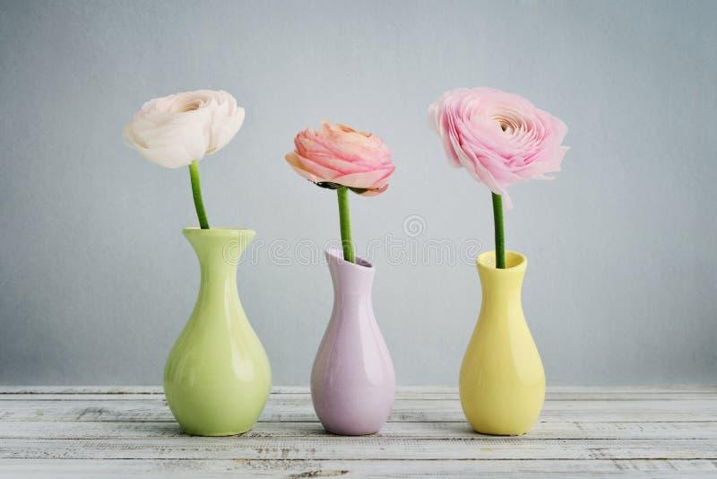 лютик цветет персиянка стоковое изображение rf