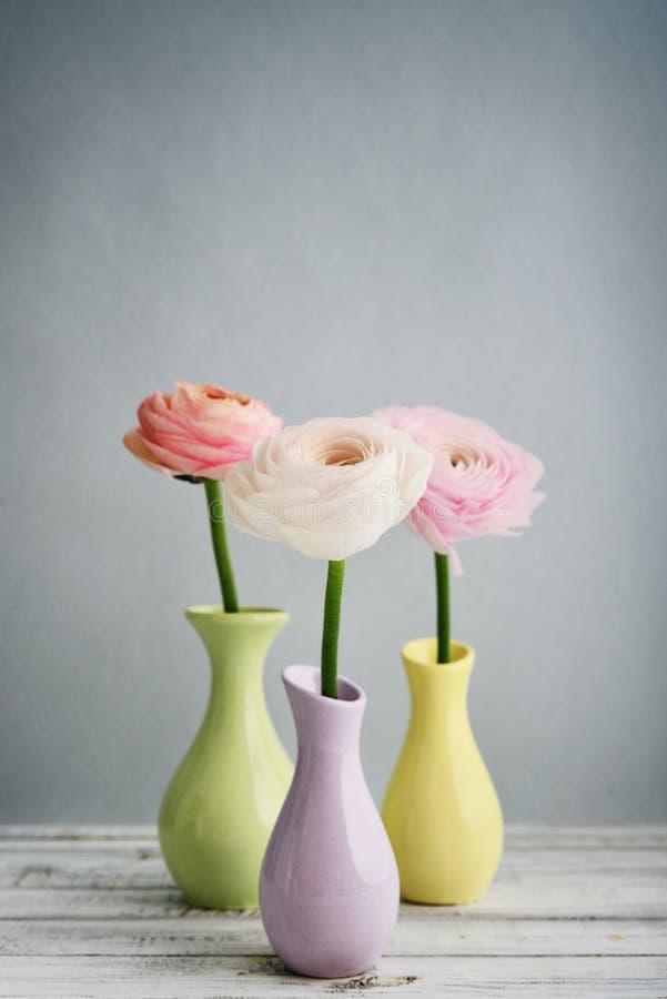 лютик цветет персиянка стоковые изображения
