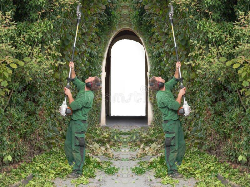 2 люд режа изгородь стоковые фото