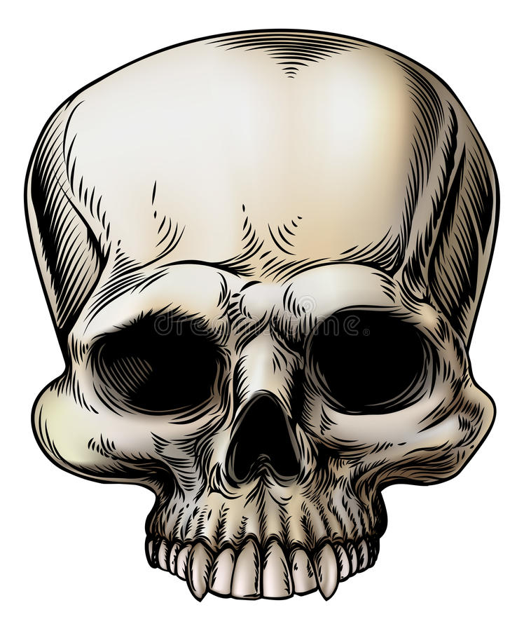 людской череп иллюстрации иллюстрация вектора