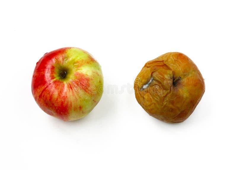 2 яблока, зрелый и тухлый стоковое изображение rf