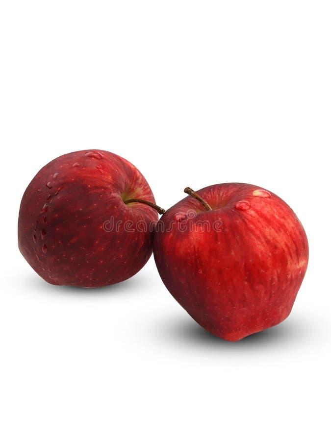 2 яблока с капельками воды на белой предпосылке стоковое изображение