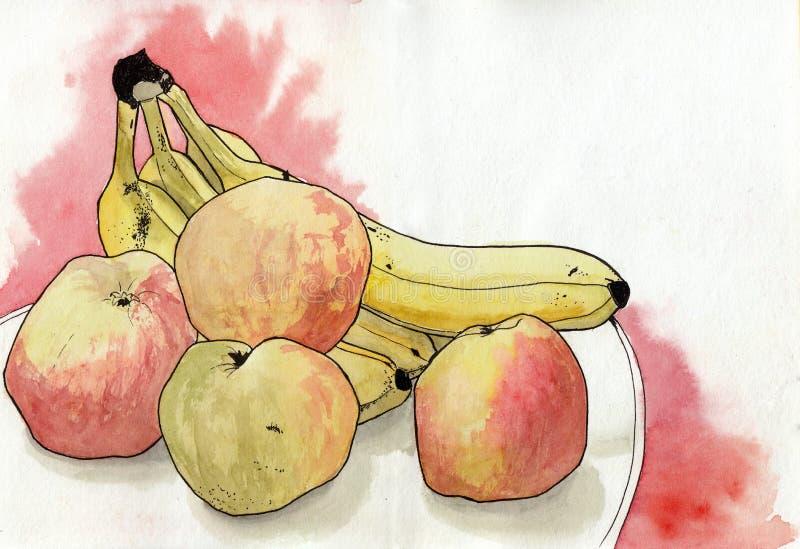 Яблоки акварели, банан на белой предпосылке Картина руки на бумаге иллюстрация вектора