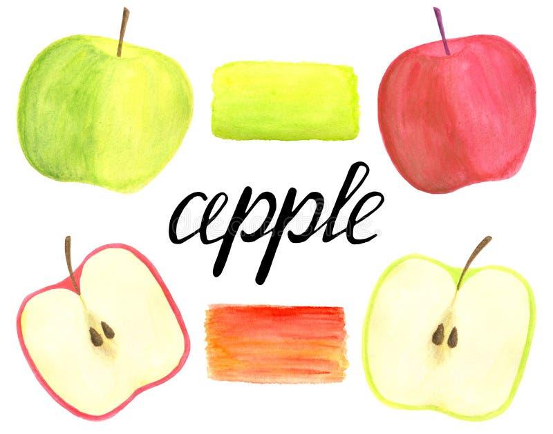 Яблоки акварели установили с помечать буквами каллиграфию и мазок щетки изолированные на белой предпосылке Красное руки вычерченн иллюстрация штока