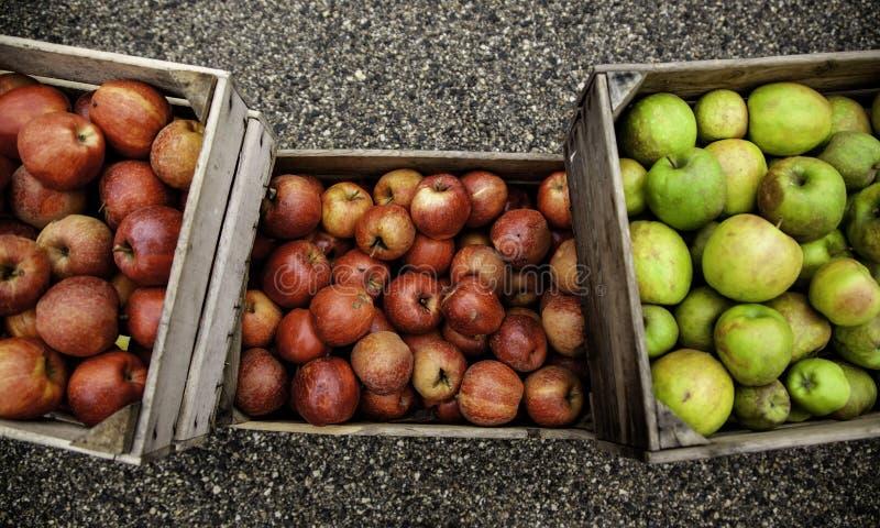 Яблоки в деревянных коробках стоковое изображение rf
