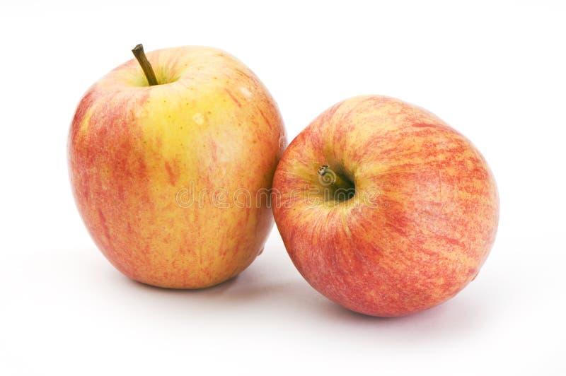 яблоки закрывают вверх стоковое фото