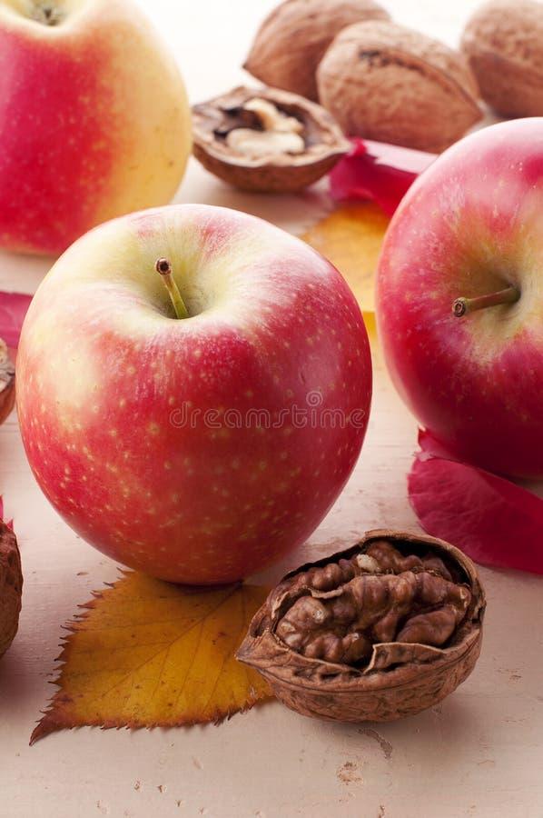Яблоки и грецкие орехи стоковое фото rf