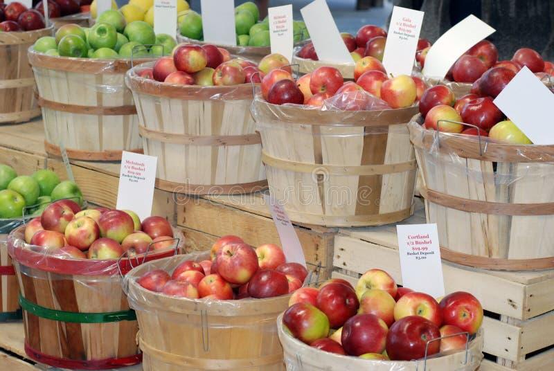 яблоки различные стоковое фото rf
