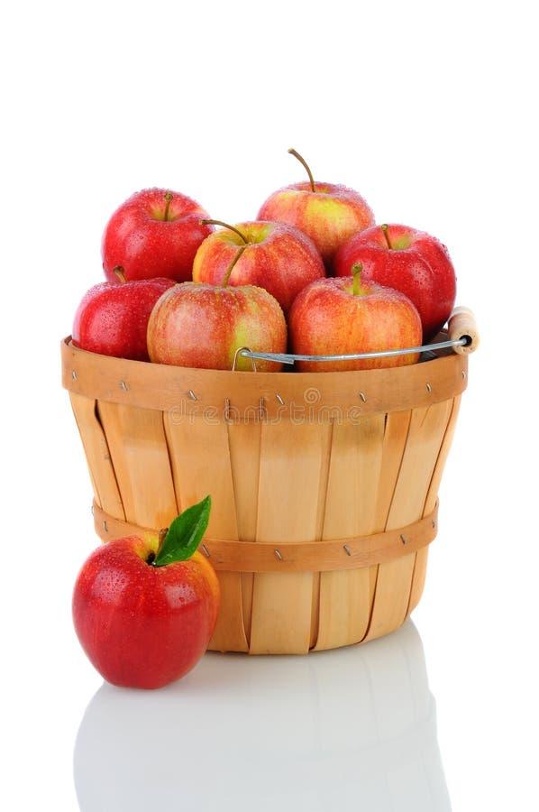 Яблоки торжественного в корзине стоковая фотография