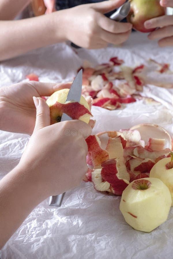 Яблоки шелушения для рецептов совместно стоковое изображение