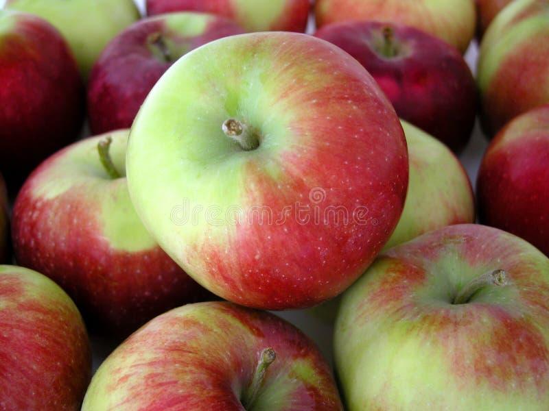 Download яблоки стоковое фото. изображение насчитывающей шар, еда - 81636