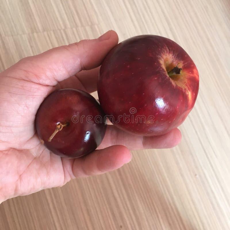 слива или яблоко прикол фото невероятно воздушная, легкая
