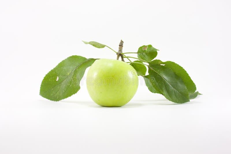 яблоко - листья зеленого цвета стоковые фото