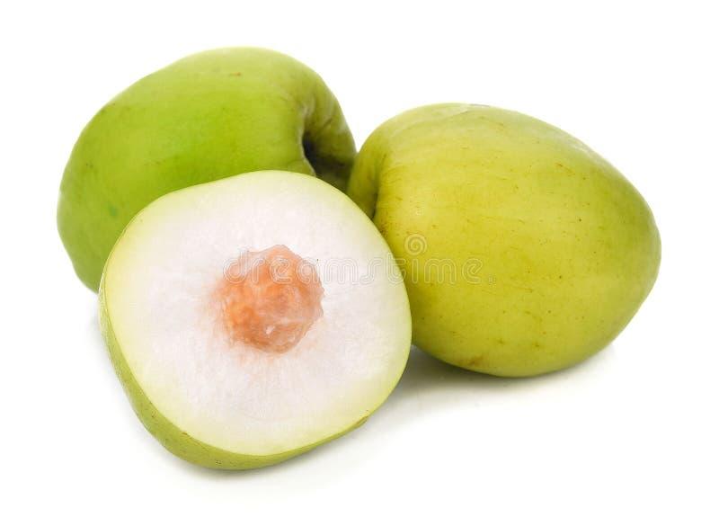 Яблоко обезьяны изолированное на белой предпосылке стоковые фото