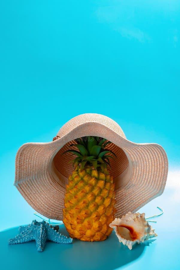 Яблоко сосны носит крышку с концепцией раковины морских звёзд и моря близрасположенной летних каникулов стоковая фотография rf
