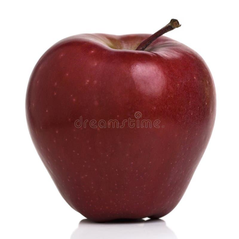 яблоко стоковое фото