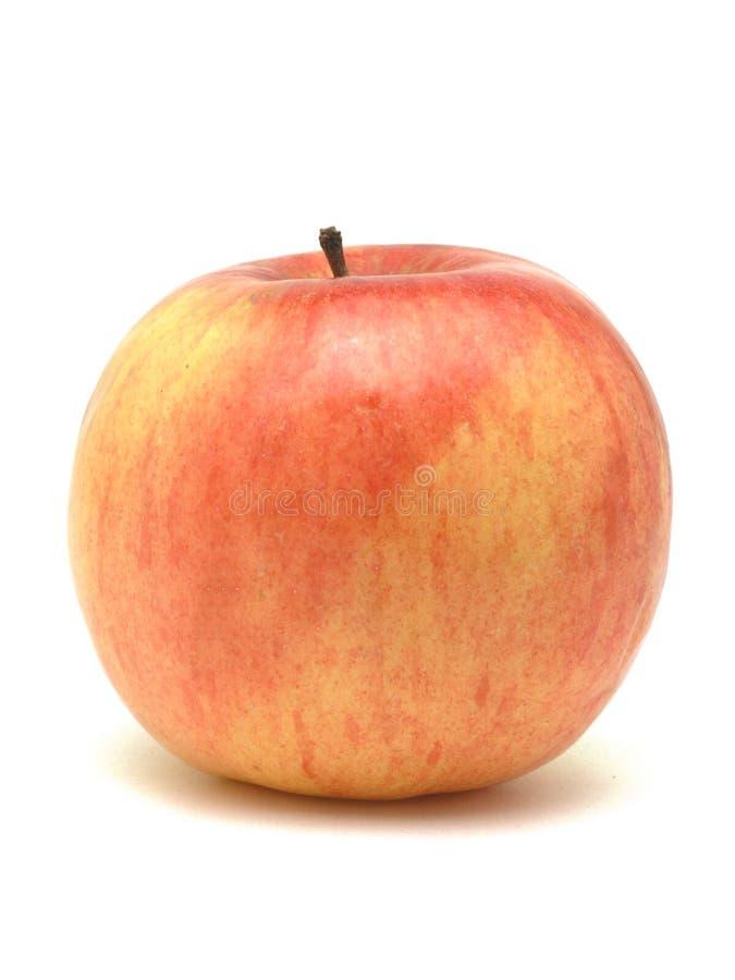 яблоко стоковые фотографии rf
