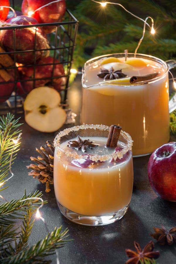 Яблочный сидр рождества уютный с анисовкой циннамона, кардамона и звезды стоковые фотографии rf