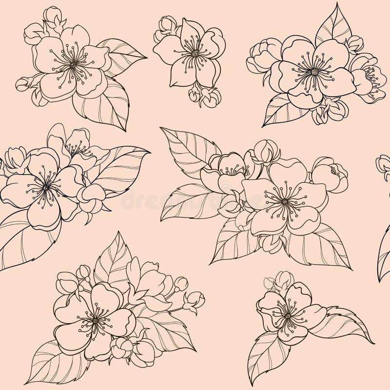 Яблочный цвет с бутоками и листьями Непрозрачный узор иллюстрация штока