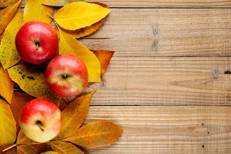 3 яблока на листьях осени стоковые изображения