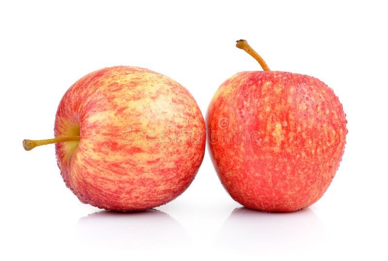 Яблоки на белой предпосылке стоковое фото