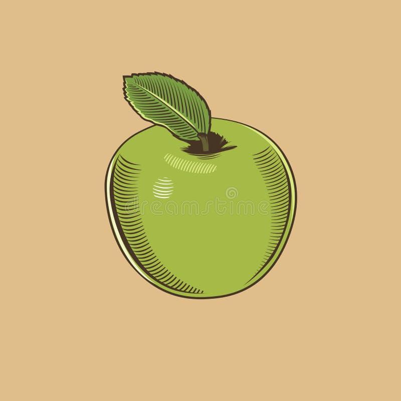 Яблоко в винтажном стиле Покрашенная иллюстрация вектора бесплатная иллюстрация