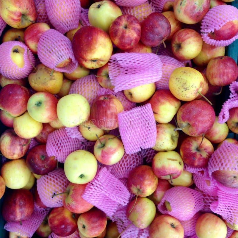Яблоко в рынке стоковые изображения rf