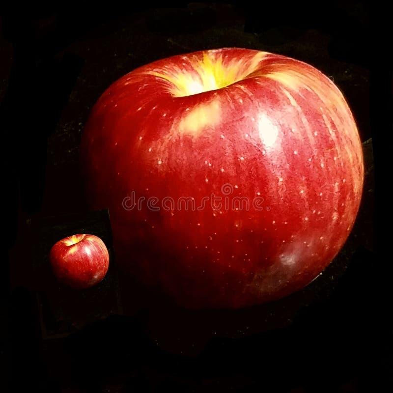 Яблоко день… стоковые фотографии rf