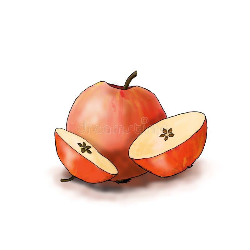 Яблоко разреза рождества иллюстрация штока