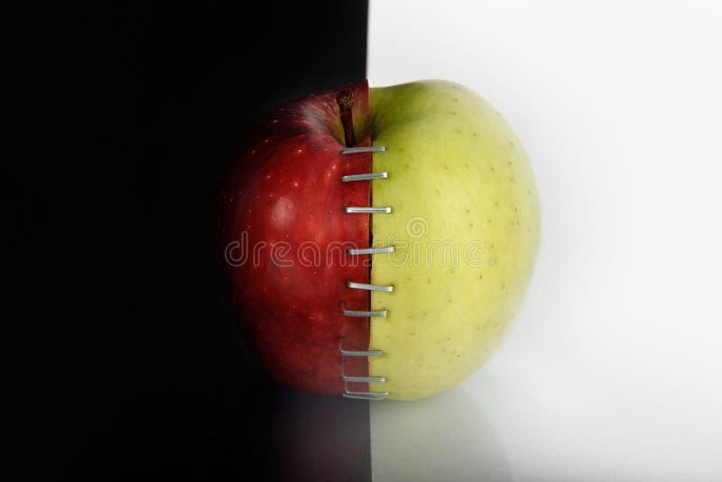 Яблоко OGM III стоковая фотография