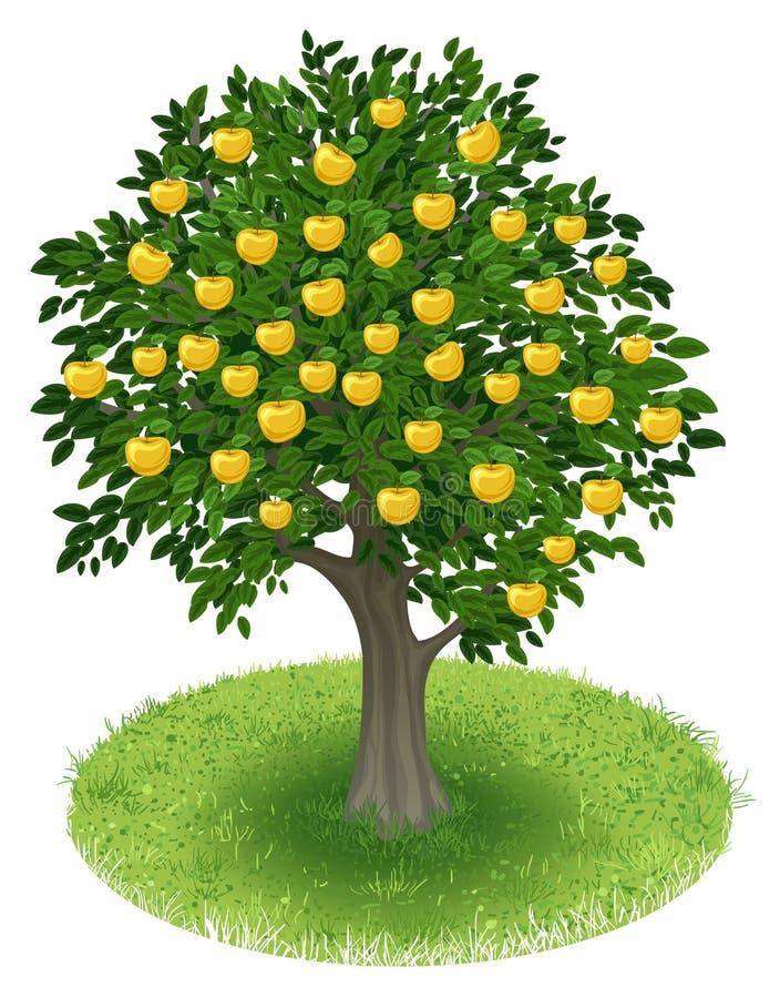 Яблоня в зеленом поле иллюстрация вектора