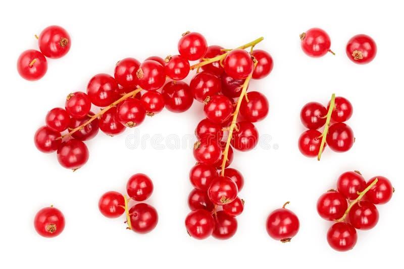 Ягода красной смородины изолированная на белой предпосылке r r стоковые изображения