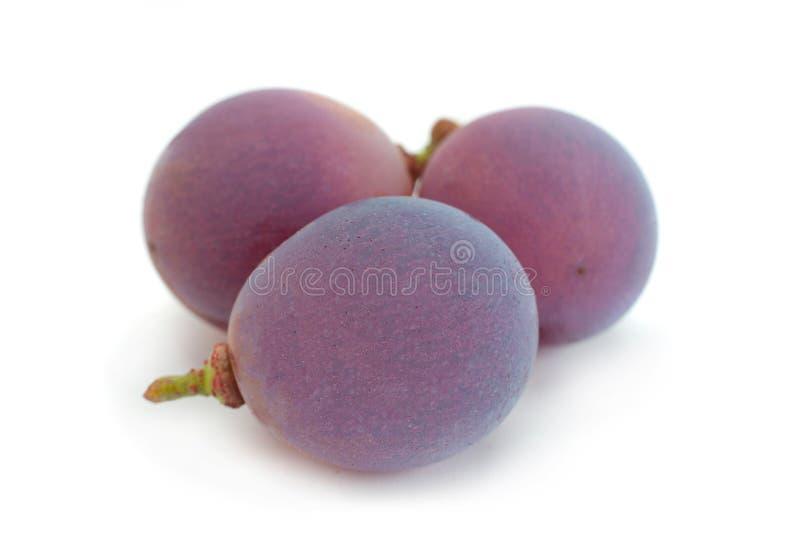 """Ягода крупного плана """"Лидия """"виноградины стоковая фотография rf"""