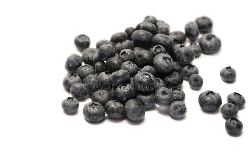 ягоды голубые стоковая фотография rf