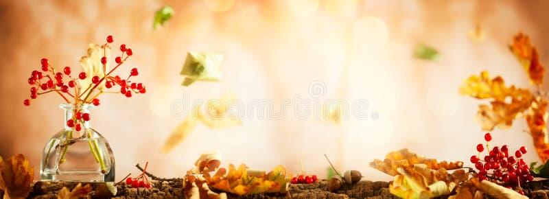 Ягоды красивой осени красные и листья дуба в стеклянной бутылке Натюрморт осени с стоковая фотография rf
