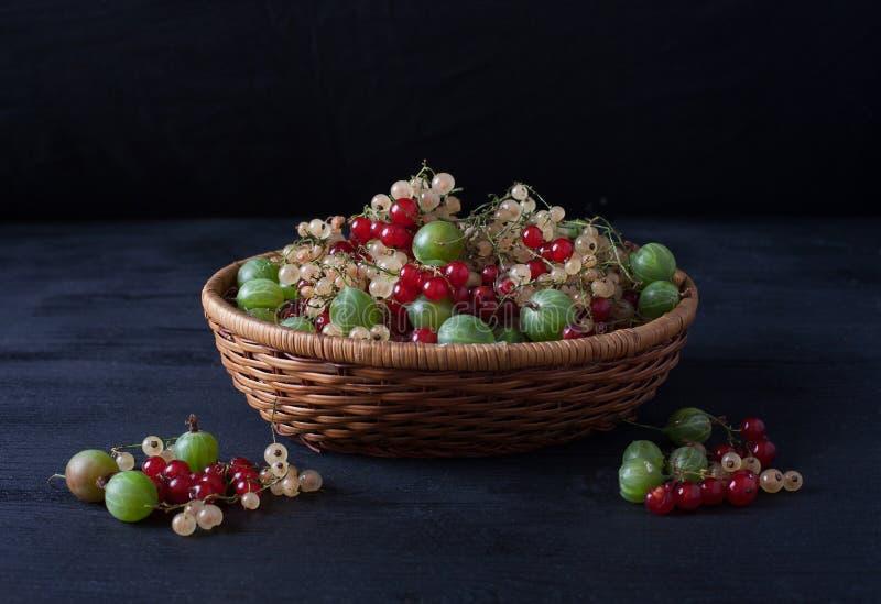 Ягоды красных и белых смородин и крыжовников в корзине o стоковая фотография rf