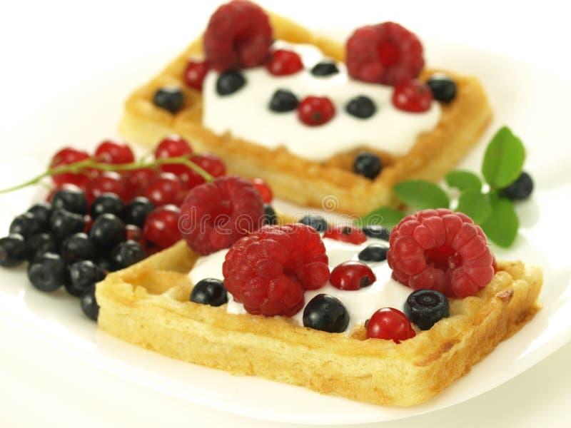 Ягоды на waffles стоковое фото rf