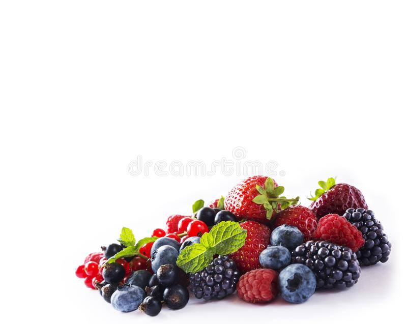 Ягоды смешивания изолированные на белизне Зрелые голубики, ежевики, красные смородины, черная смородина, поленики и клубники Vari стоковые фото