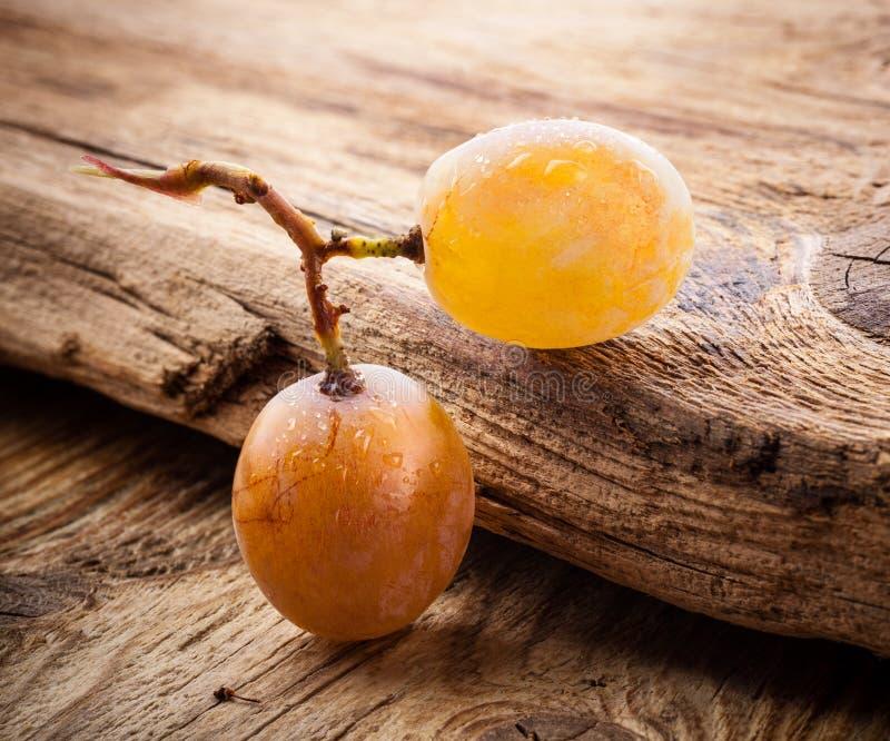 Ягода виноградин стоковое изображение rf