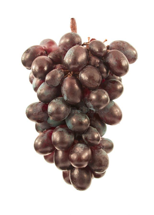 Ягоды виноградины стоковая фотография rf